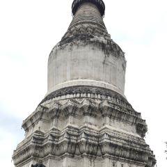 塔院寺用戶圖片