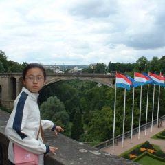 阿道夫大橋用戶圖片