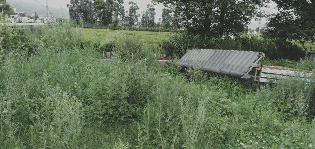 운해화훼농원