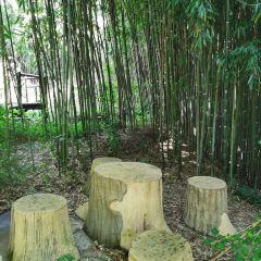 Haiyang Yunding Nature Tourist Scenic Spot User Photo