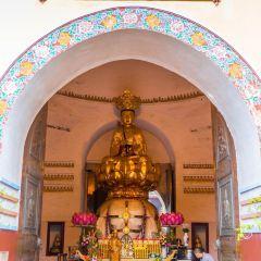 Wannian Temple User Photo