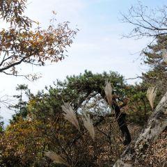 大別山主峰景區白馬尖用戶圖片
