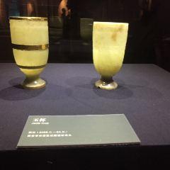 西安博物院用戶圖片