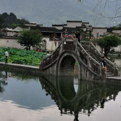 宏村景區用戶圖片