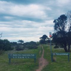 Hallett Cove Conservation Park User Photo