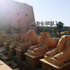 カルナック神殿のユーザー投稿写真