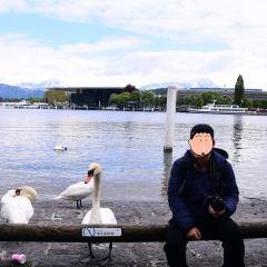 天鵝廣場用戶圖片