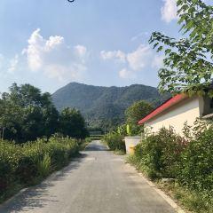 Shuanglingcun User Photo