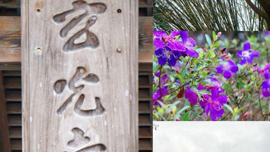 #那年冬天在台湾#——日月潭•玄光寺玄光寺规模不是很大,建筑