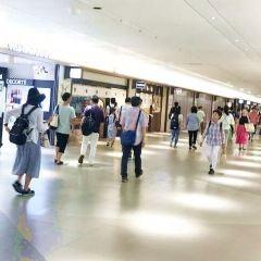 Sakae User Photo