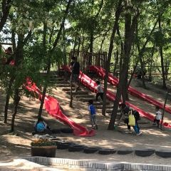 Shawo Forest Park User Photo