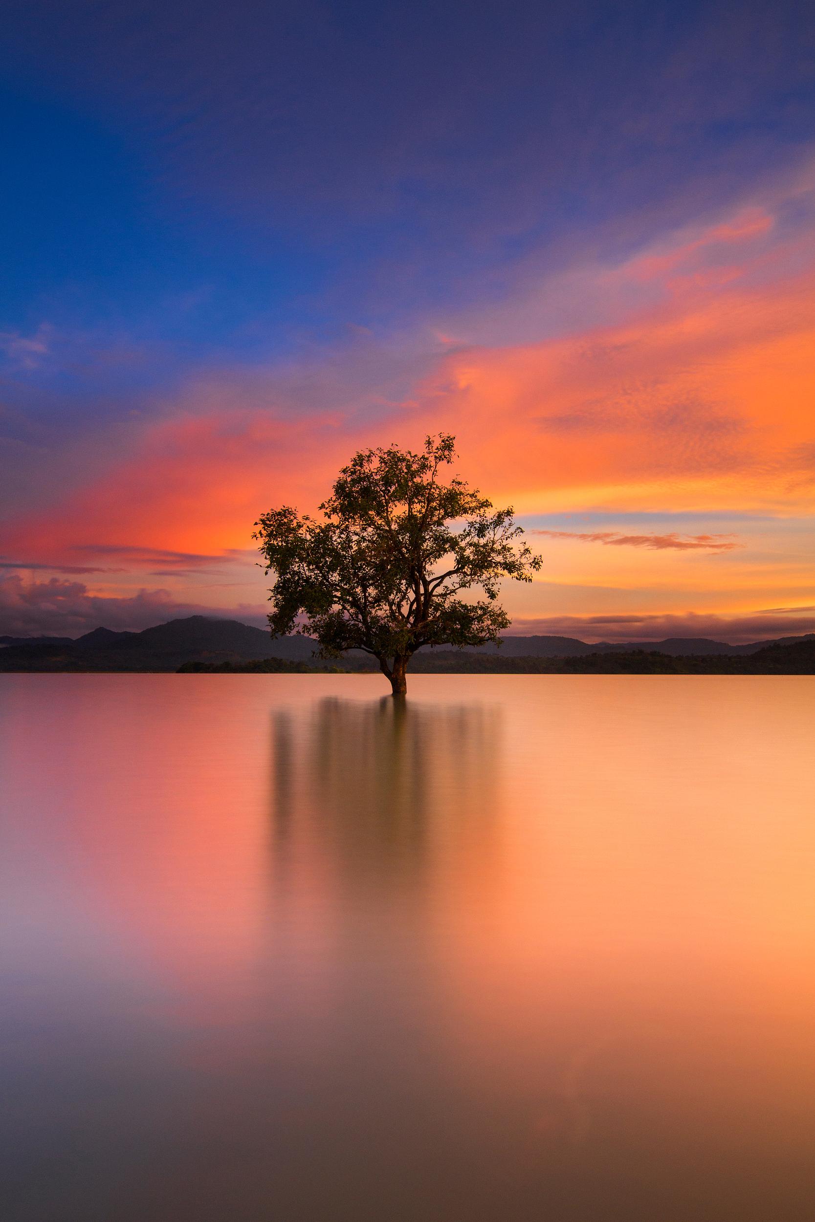 The Fairy Lake