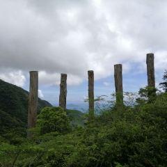 大嶼山用戶圖片