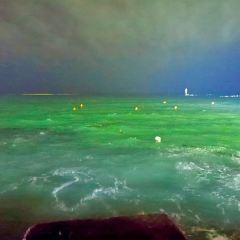 廟子湖島用戶圖片