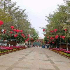 Maoming Forest Park User Photo