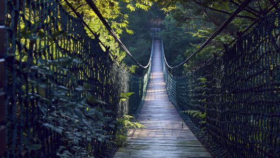 瑤琳國家森林公園