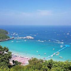 เกาะล้าน User Photo