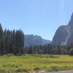 Yosemite National Park User Photo