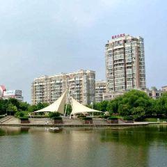 文峰公園用戶圖片