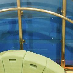 Osaka Science Museum User Photo