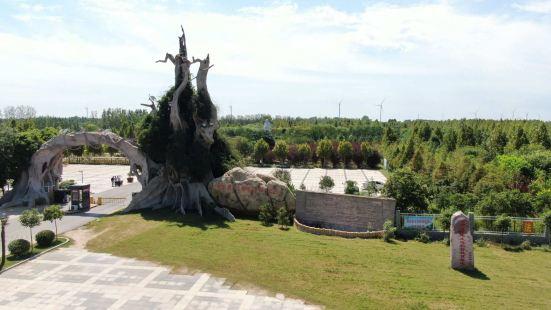 東明黃河國家濕地公園動物園