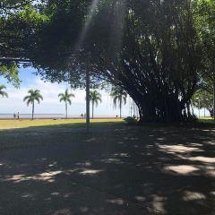 Anzac Park User Photo