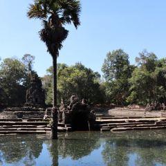 龍蟠水池用戶圖片