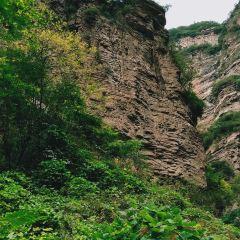 도화곡 여행 사진