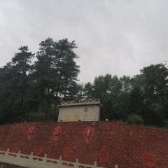 鎮海寺用戶圖片