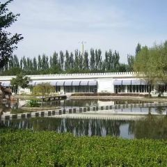 Yongning Culture Park User Photo