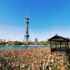Shijiazhuang TV Tower User Photo