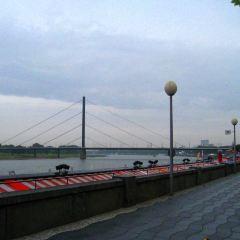 萊茵河畔散步道用戶圖片