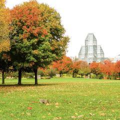 阿瑅勒利公園用戶圖片