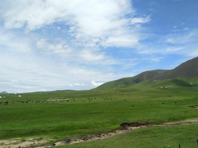 美仁大草原