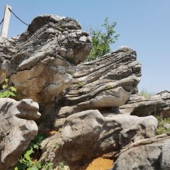 Yashan Flower Sea and Stone Forest User Photo