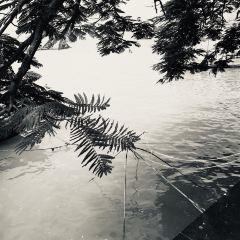 Mayu Island User Photo