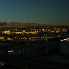 Las Vegas Strip User Photo