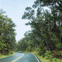 Kilauea Volcano User Photo