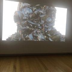 QUT Art Museum User Photo