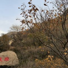 Badaling Ancient Great Wal User Photo