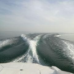 博斯騰湖用戶圖片