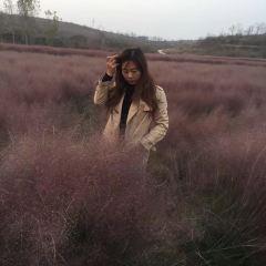 唐布拉草原用戶圖片