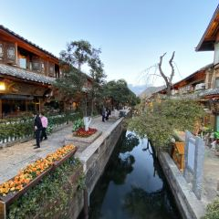 Lijiang Ancient City User Photo