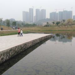 Wetland Garden User Photo