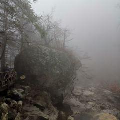馬鬃嶺自然保護區用戶圖片