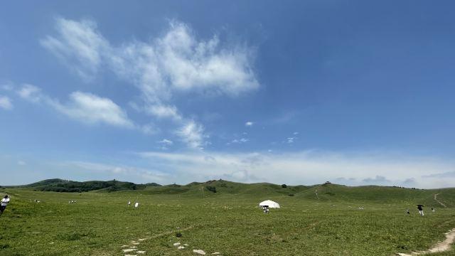 塞罕壩國家森林公園