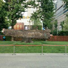 Tianfu Square User Photo