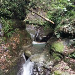 Chunxi Town User Photo