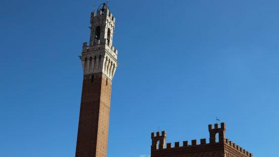 非常高非常细的塔楼,看着似乎都在摇晃。要登顶需要排很久的队