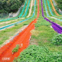 木蘭天池用戶圖片